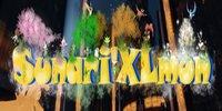 Sunari'Xlmon - Pixelmon